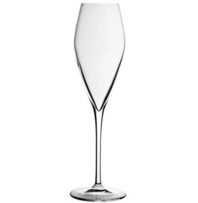 Champagne glass Atelier 27cl